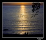 20080604-ps