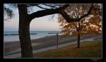 20091025 DSC7042 Lakeview Park